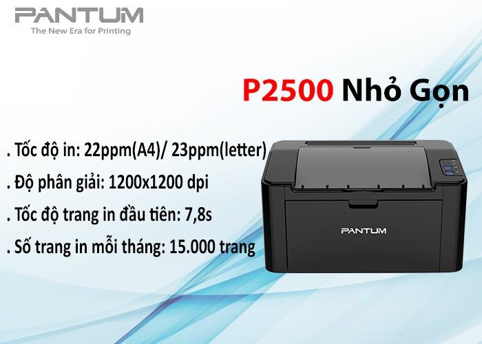 Máy in laser đơn sắc Pantum P2500 - No WiFi3