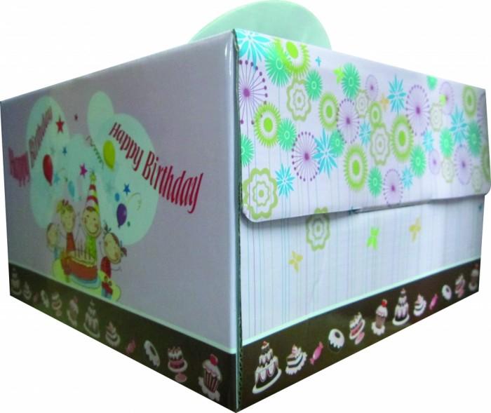 Mẫu hộp bánh kem- do bao bì Bình Minh PAT sản xuất - hinh 32