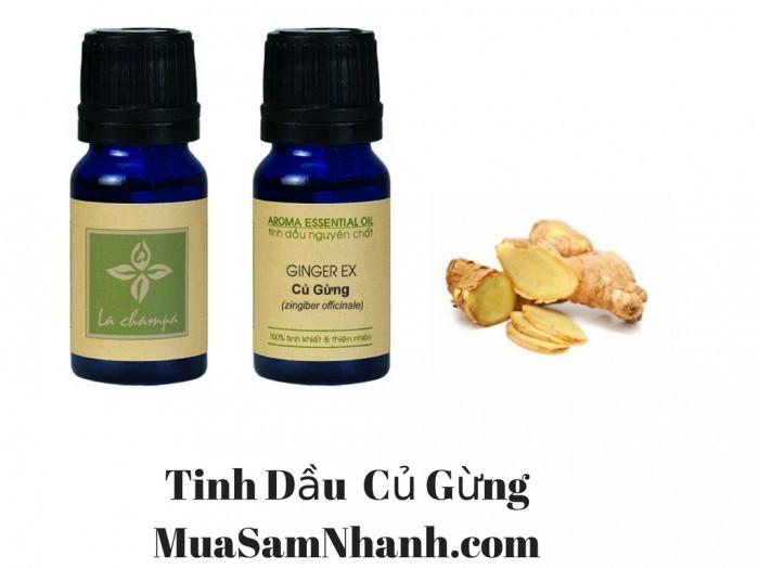 Tinh Dầu Củ Gừng, GINGER OIL, Tinh Dầu La champa  - MSN1812900