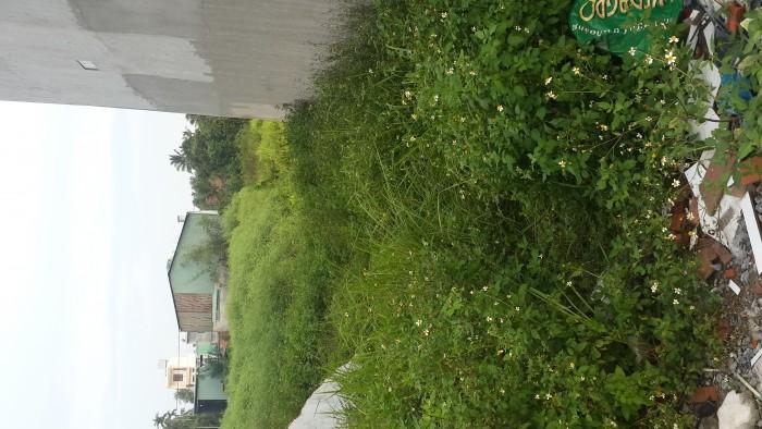 Bán đất chính chủ đường TX 52, P. Thạnh Xuân, Quận 12. 4x13,2 m2. Giá 1 tỷ 150.Sổ Hồng riêng, bao sang tên