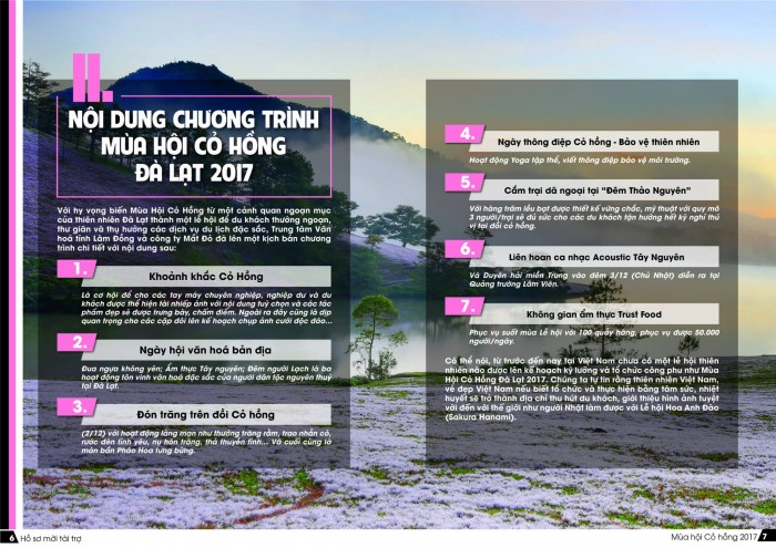 Tìm Nhà tài trợ cho Dự án Mùa Hội cỏ hồng tại Đà Lạt 2017