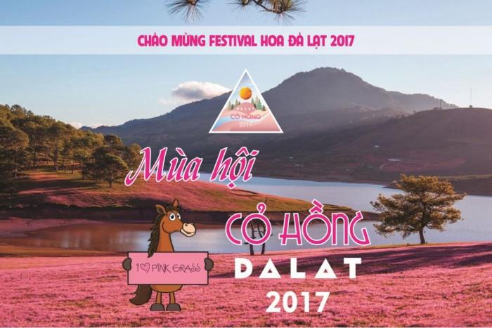 TicketBox - Mùa hội Cỏ hồng tại Đà Lạt 2017