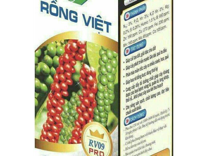 Phân sinh học Rồng Việt0