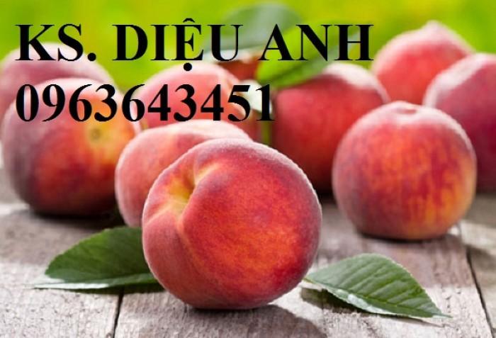 Chuyên cung cấp cây giống đào ăn quả, đào bát tiên, đào đỏ, đào quả đỏ nhập khẩu, uy tín6