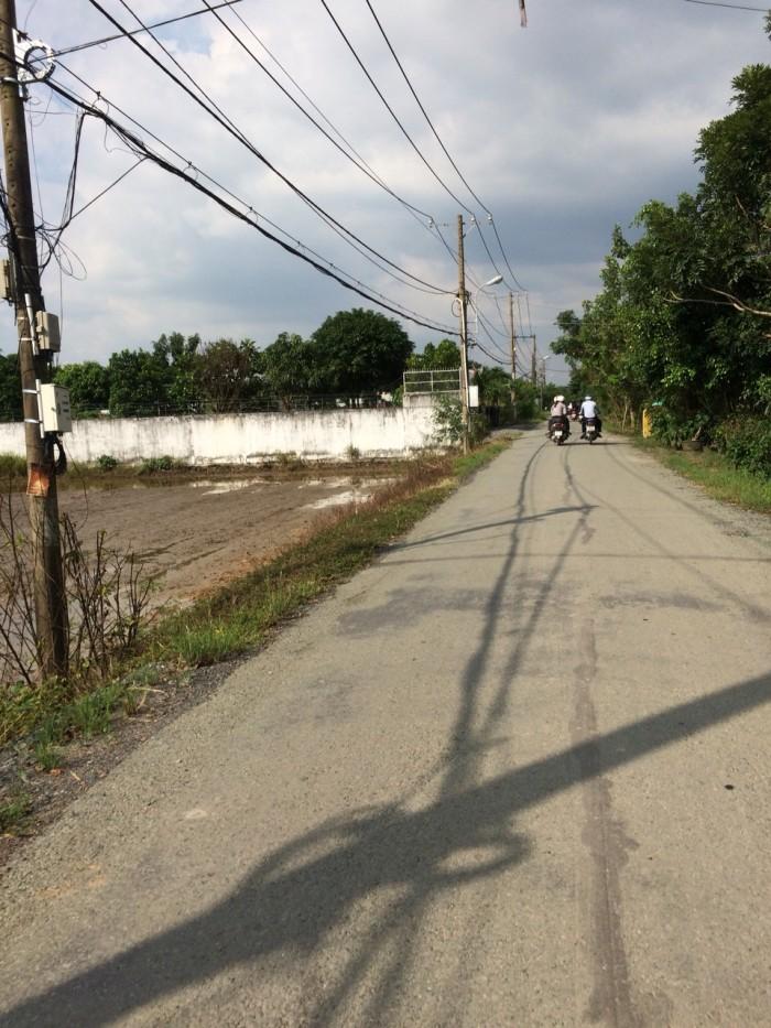 Bán 186m2 đất, đường nhánh Đoàn Nguyễn Tuân (Hưng Lộ 11), Bình Chánh
