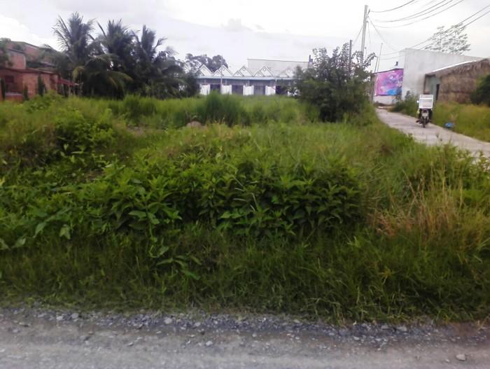 Bán lại 1111m2 đường Tân Liễu, xã Tân Quý Tây, Bình Chánh.