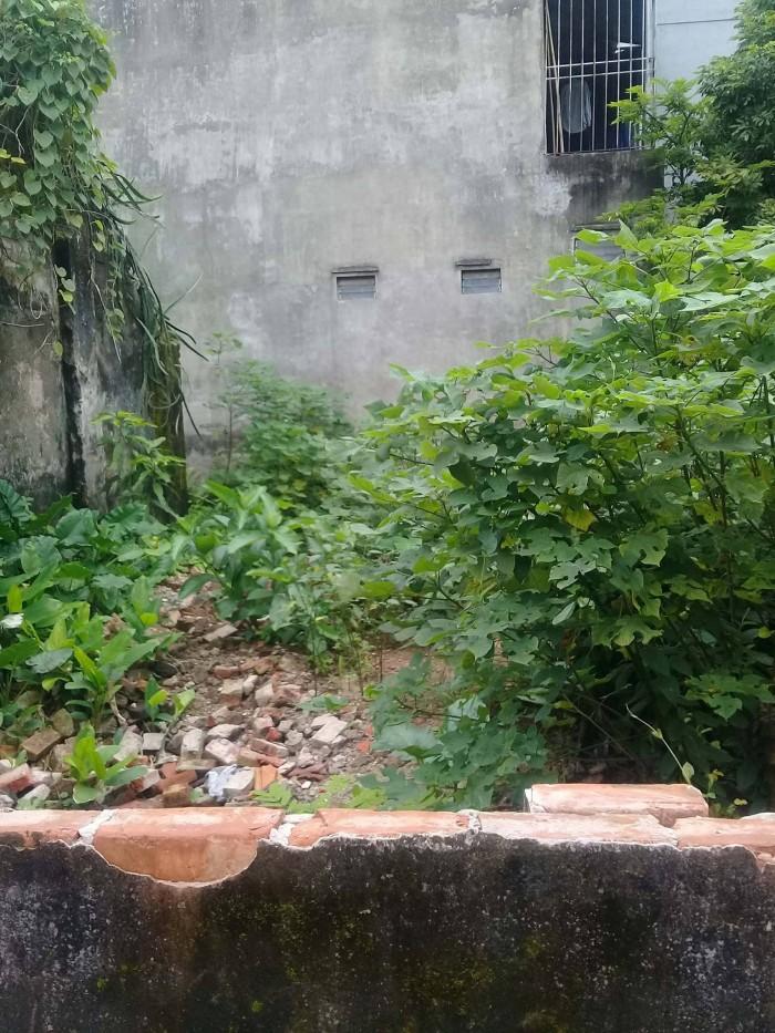 Bán đất tổ 12 thạch bàn , DT 114m2