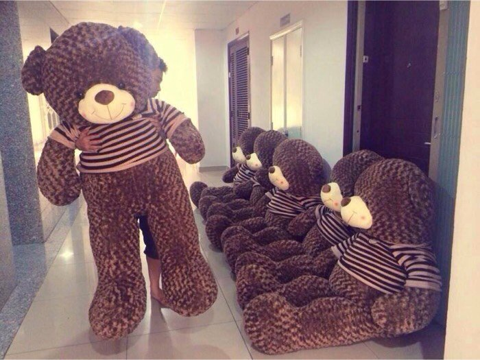 Gấu Teddy dài 1m22