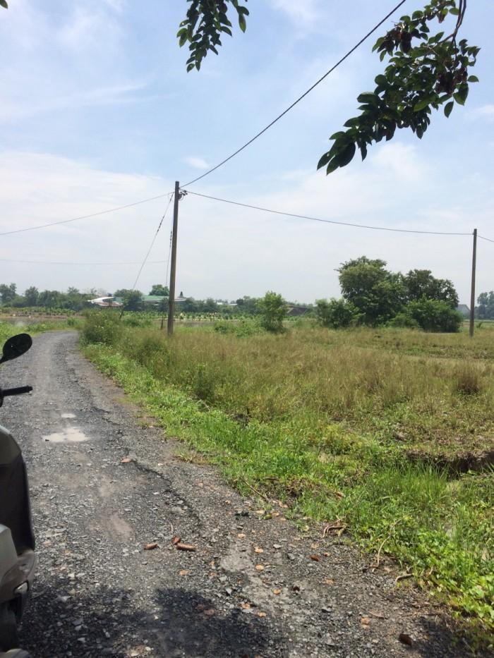 Bán gấp 1100m2 đất (có 120m thổ cư), xã Tân Qúy Tây, Bình Chánh.