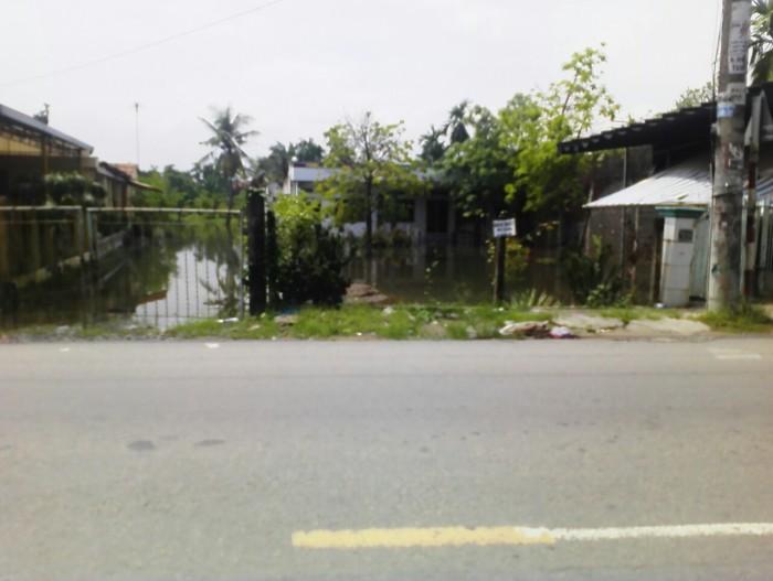 Bán đất xây nhà trọ, 100m2, nằm ngày khu công nghiệp Tân Kim, Cần Giuộc Long An.