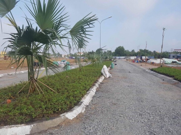 Đất 100m2 đường Trịnh Quang Nghị Ngay UB Phong Phú