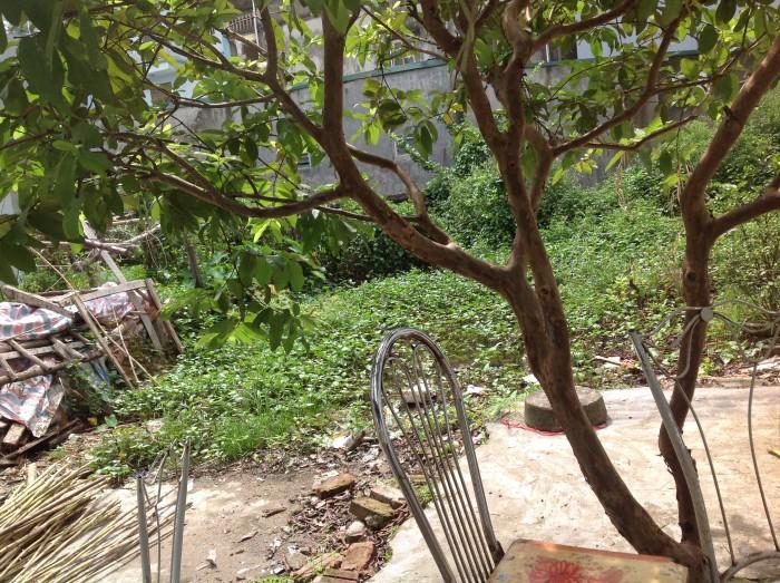 Bán Gấp lô đất ở Thạch Bàn, Long Biên, DT31,5 m2, MT=3,25 m