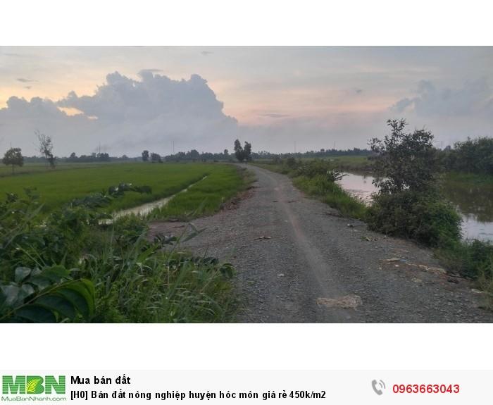 Bán đất nông nghiệp huyện Hóc Môn giá rẻ