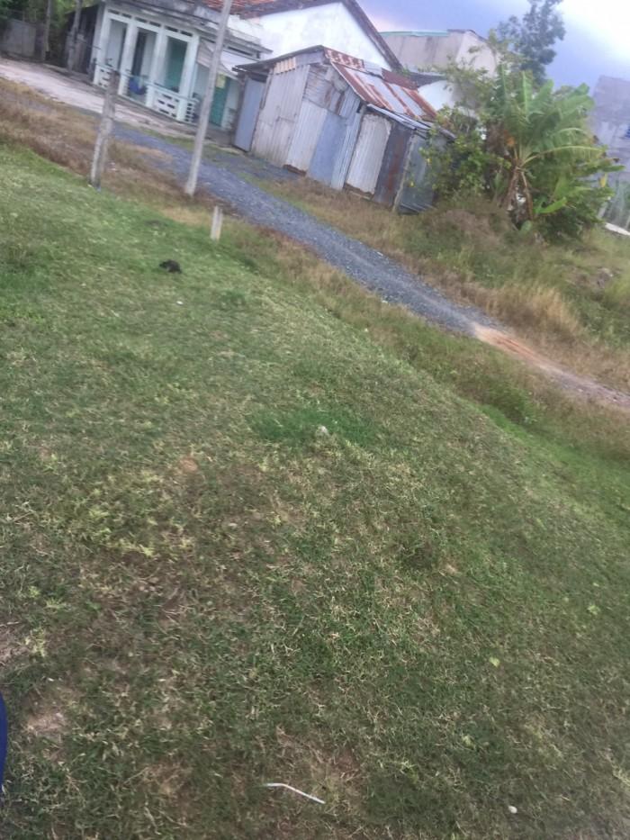 Bán Đất Bình Chánh Giá Rẻ,1000 M2 Đường Ô Tô