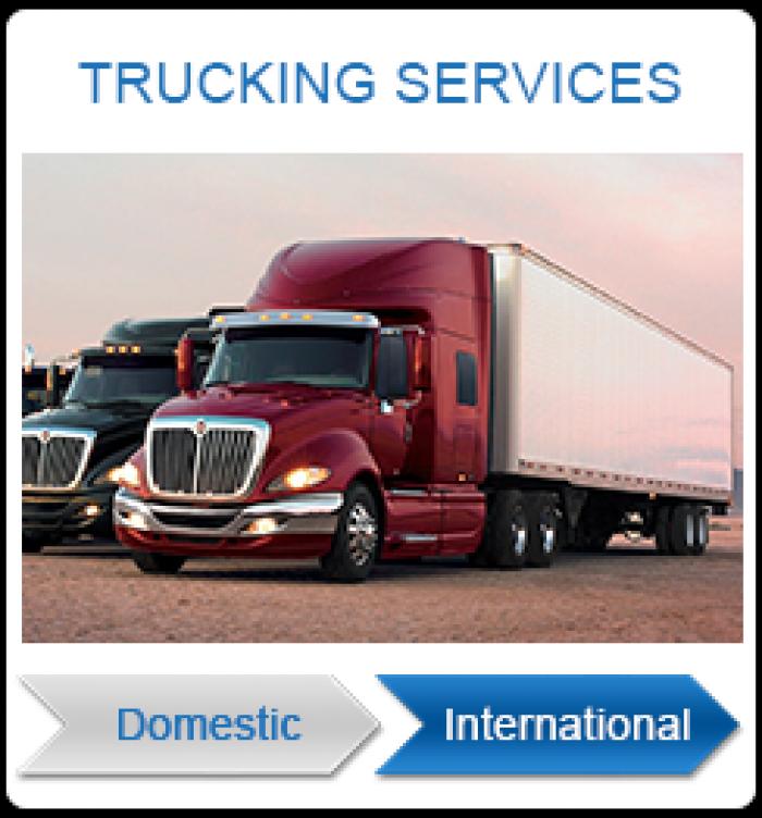 Dịch vụ vận chuyển nội địa & quốc tế uy tín