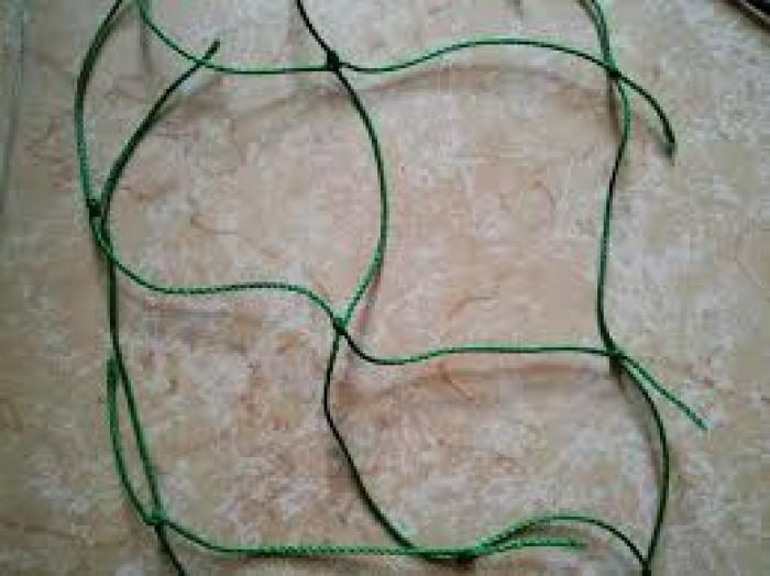 Lưới dây dàn leo