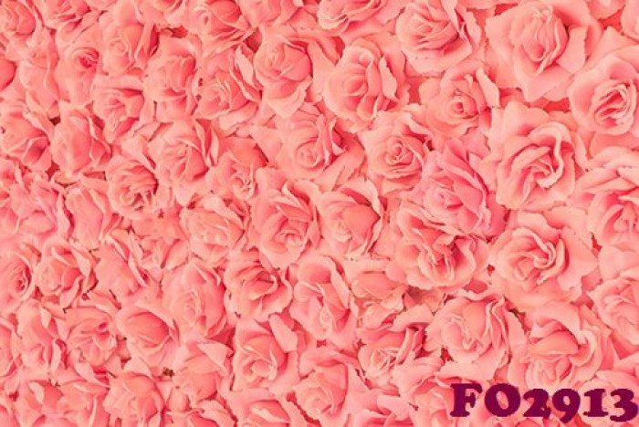 phông nền chụp ảnh hoa hồng3