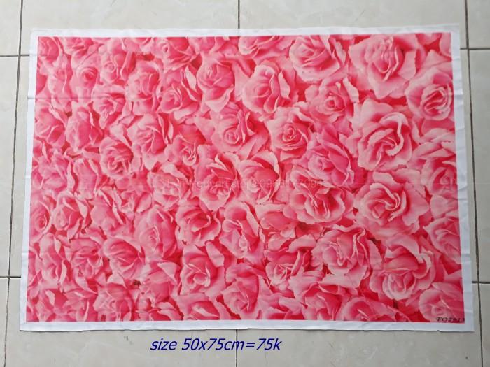 phông nền chụp ảnh hoa hồng2
