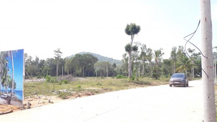 Sở Hữu Đất Đẹp Tại Dự Án Cây Thông Ngoài