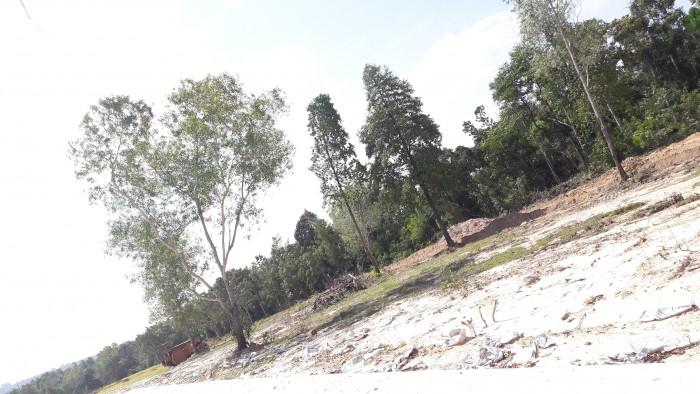 Không quá khó khi muốn mua đất tại Phú Quốc, Chỉ 200 TRIỆU đã sở hữu ngay một lô đất đẹp tại BÚNG GỘI