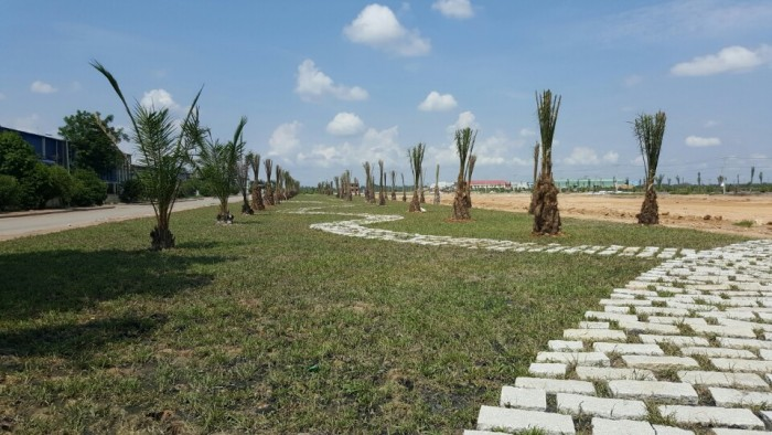 Bán đất dự án Vista land Tây Bắc Củ Chi