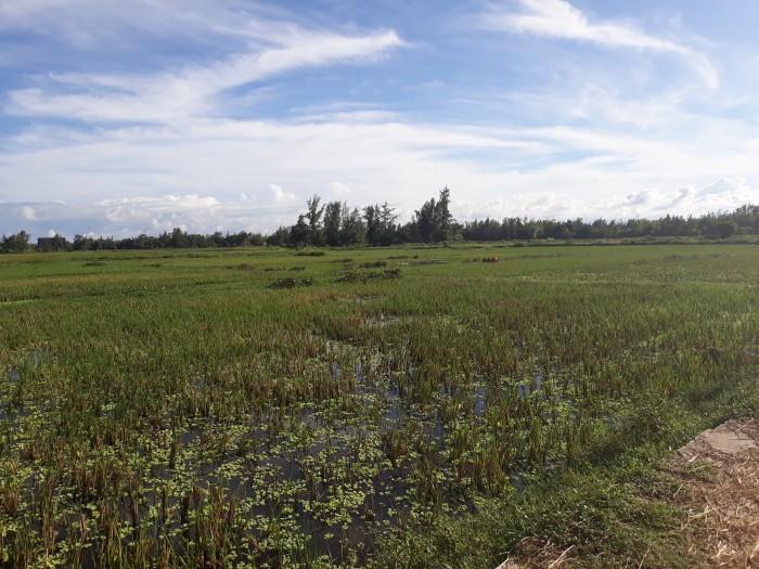 Khu đô thị nghỉ dưỡng River View, cơ hội đầu tư cho các nhà đầu tư có tầm tài chính vừa phải