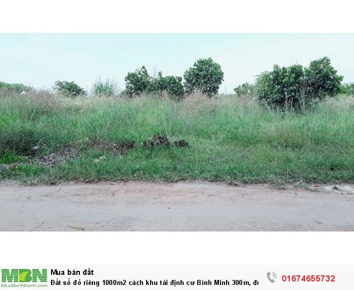 Đất sổ đỏ riêng 1000m2 cách khu tái định cư Bình Minh 300m, đường Võ Nguyên Giáp