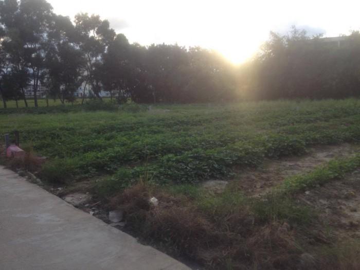 Đất kiệt ô tô Nguyễn Lộ Trạch