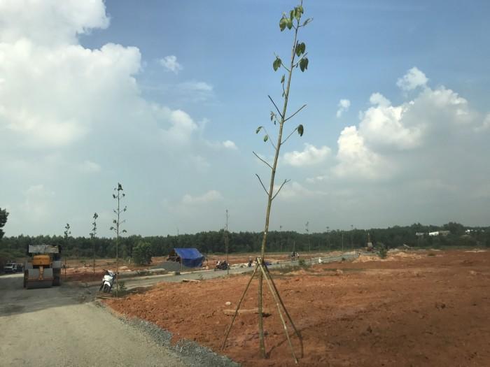 Đất nền sân bay Long Thành, sổ hồng riêng, đầu tư thấp lợi nhuận cao