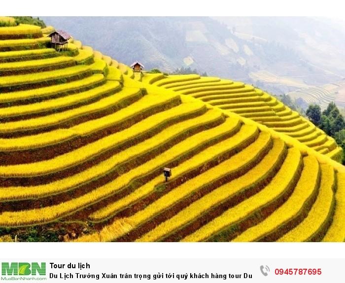 Hà Giang - Ruộng bậc thang