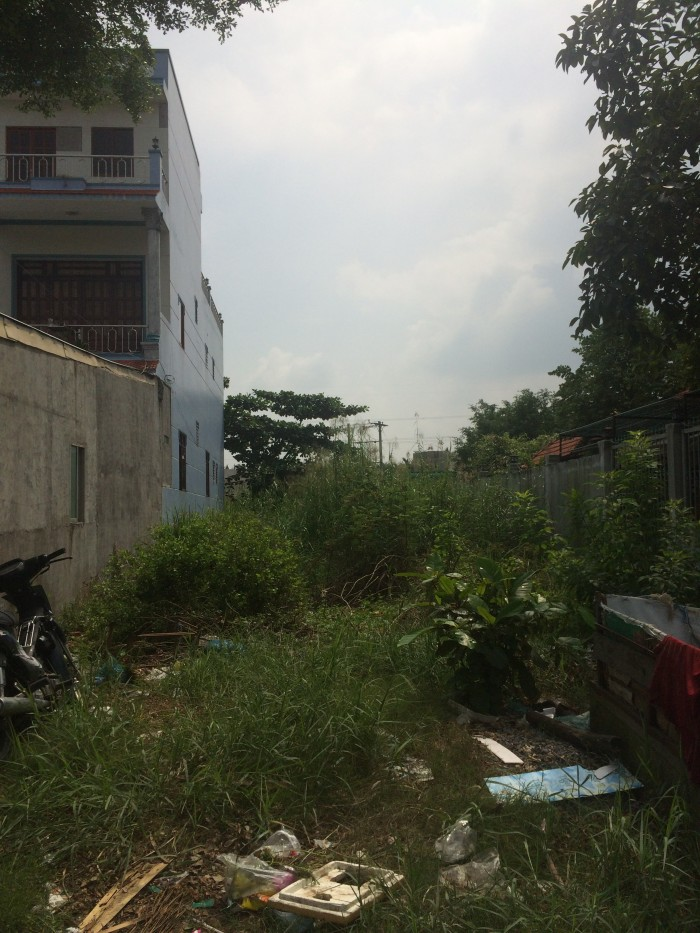 Sở Hữu 118m2 Thổ Cư, Nguyễn Văn Tạo, Long Thới, Nhà Bè