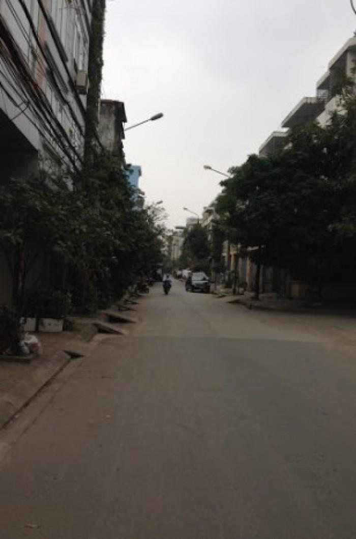 Bán đất đấu giá phố Trần Đăng Ninh, Lý Thường Kiệt, Hà Đông, 40m2, 50m2, mặt sau phố Quang Trung