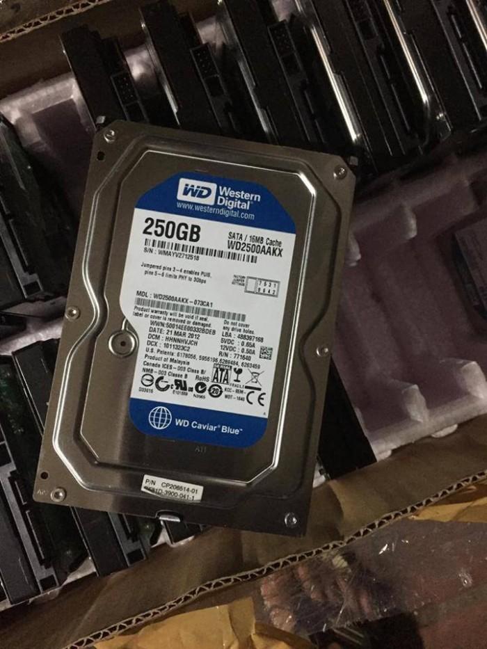 Thanh lý đk ít ổ cứng wd 250G, ổ tháo máy đồng bộ nên rất đẹp1
