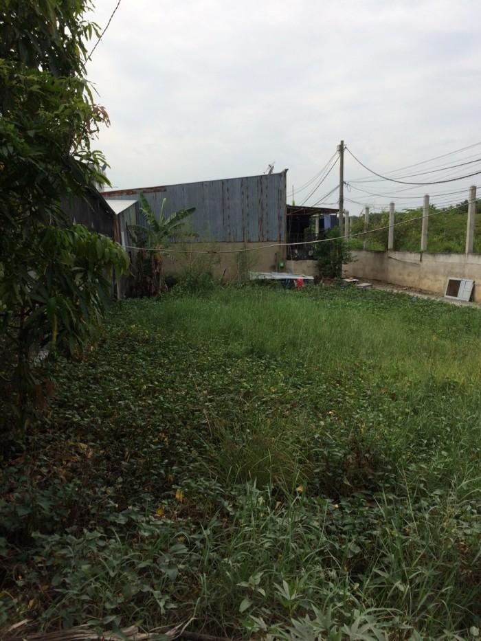 100m2 Đất bán gấp nhánh Đoàn Nguyên Tuấn, xã Tân Qúy Tây, Bình Chánh