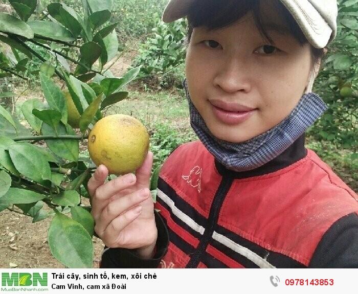 Cam Vinh, cam xã Đoài0
