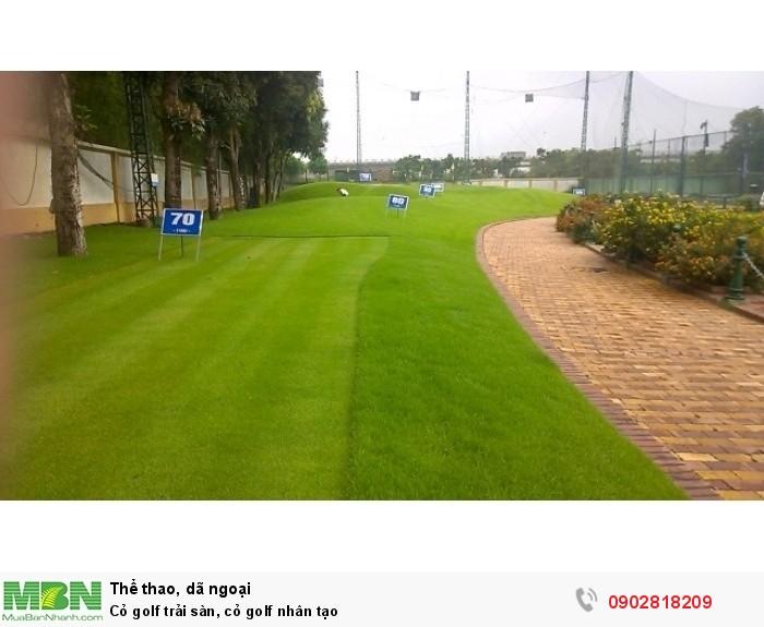 Cỏ golf trải sàn, cỏ golf nhân tạo3