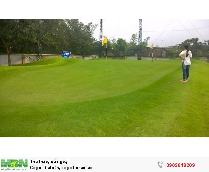 Cỏ golf trải sàn, cỏ golf nhân tạo4
