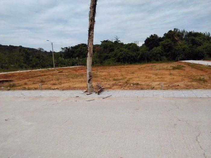 Bán đất nền dự án cây thông ngoàI ,chiết khấu 16% nhanh tay lựa chọn
