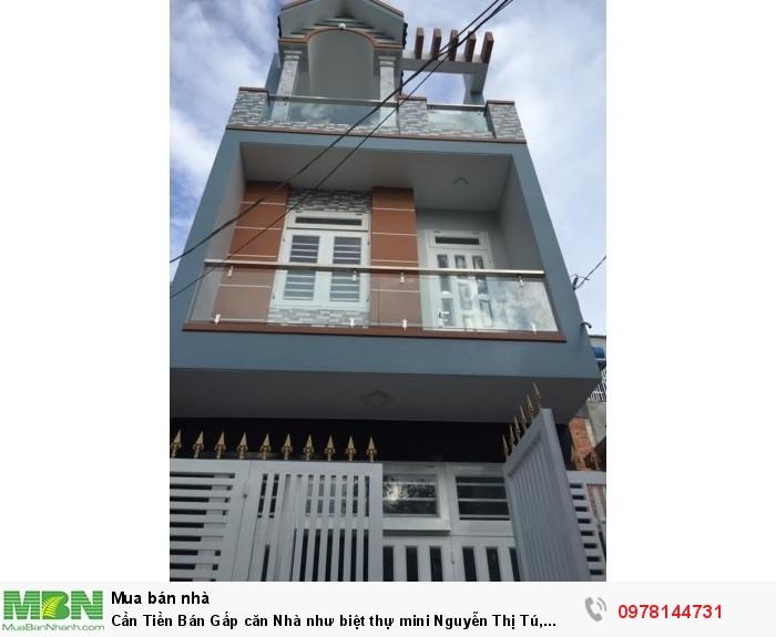 Cần Tiền Bán Gấp căn Nhà như biệt thự mini Nguyễn Thị Tú, 4,2x12,2m