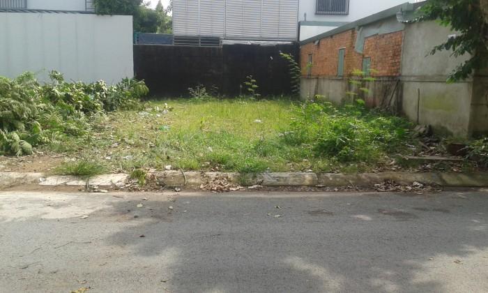 Bán đất 9x20m khu biệt thự Tấn Trường, quận 7
