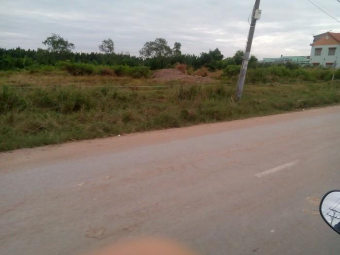 Vỡ Nợ! Bán Gấp 5000m2 Đất, Shr, Xã Phong Phú, Bình Chánh