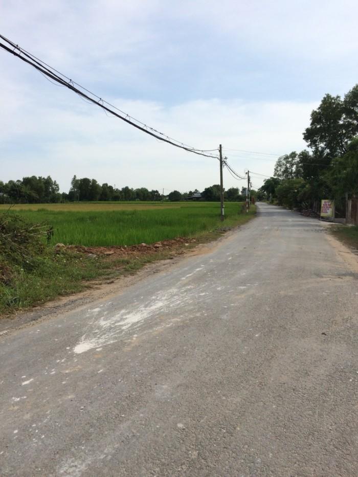 Đất thổ cư Bình Chánh giá rẻ 1920m2, giá 4tr/m2, đường oto