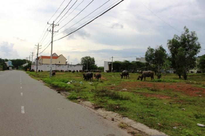 Becamex thanh lý 45 lô đất nền ngay đại học Thủ Dầu Một, tiện ở kd buôn bán, xây trọ