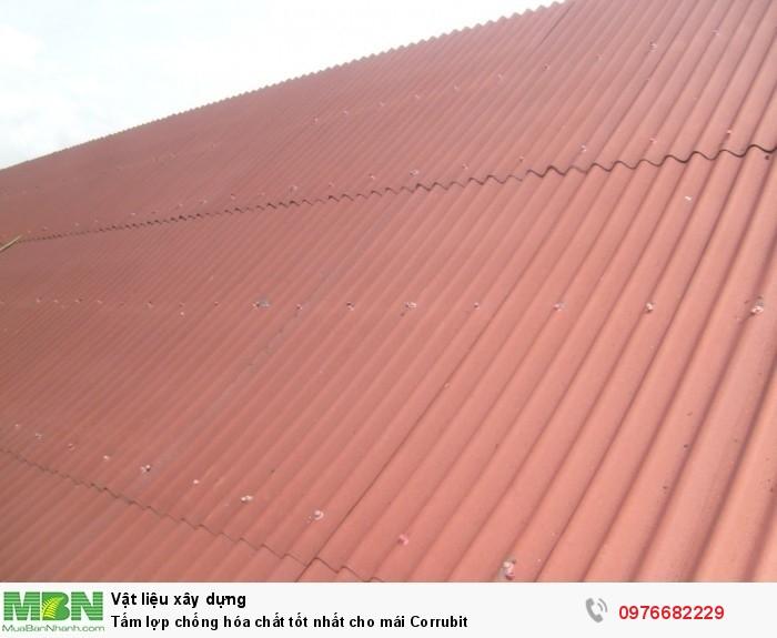 Tấm lợp chống hóa chất tốt nhất cho mái Corrubit11