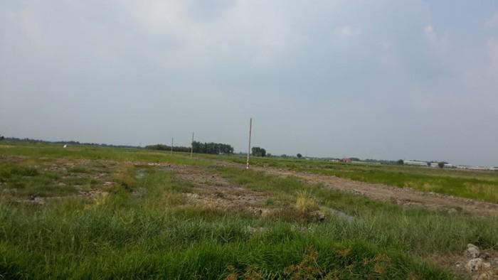 Bán đất vườn xã tân thạnh đông ,củ chi ,dt ,1000m2 giá 650 triệu sổ hồng riêng