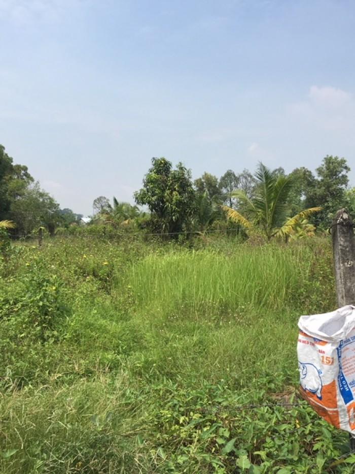 Lô đất 968m2 thích hợp xây trọ / biệt thự vườn cực đẹp tại Thạnh Phú