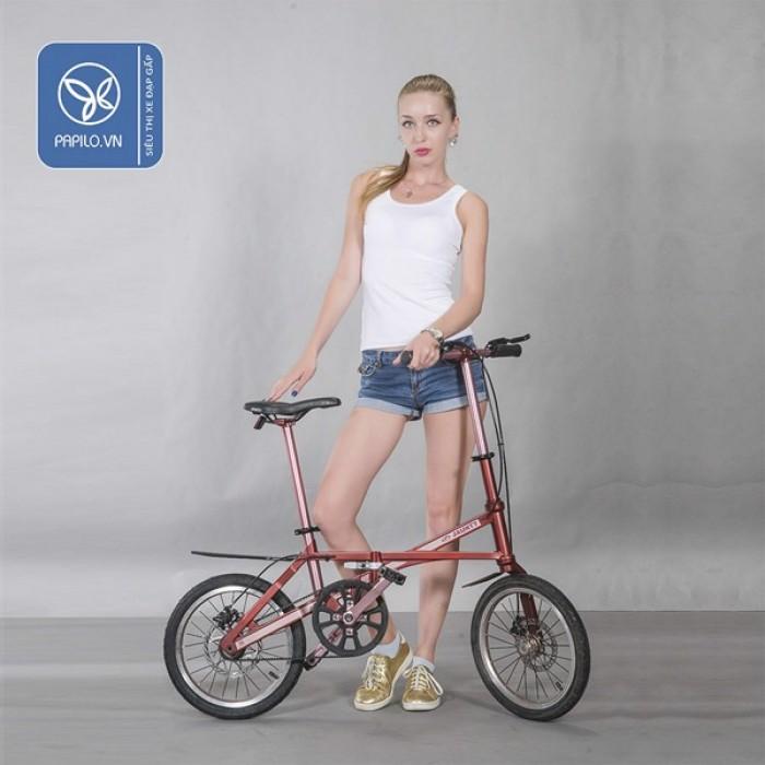 Xe đạp gấp Carbon Jaunty