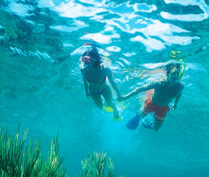 Tour bơi lặn snock Nha Trang