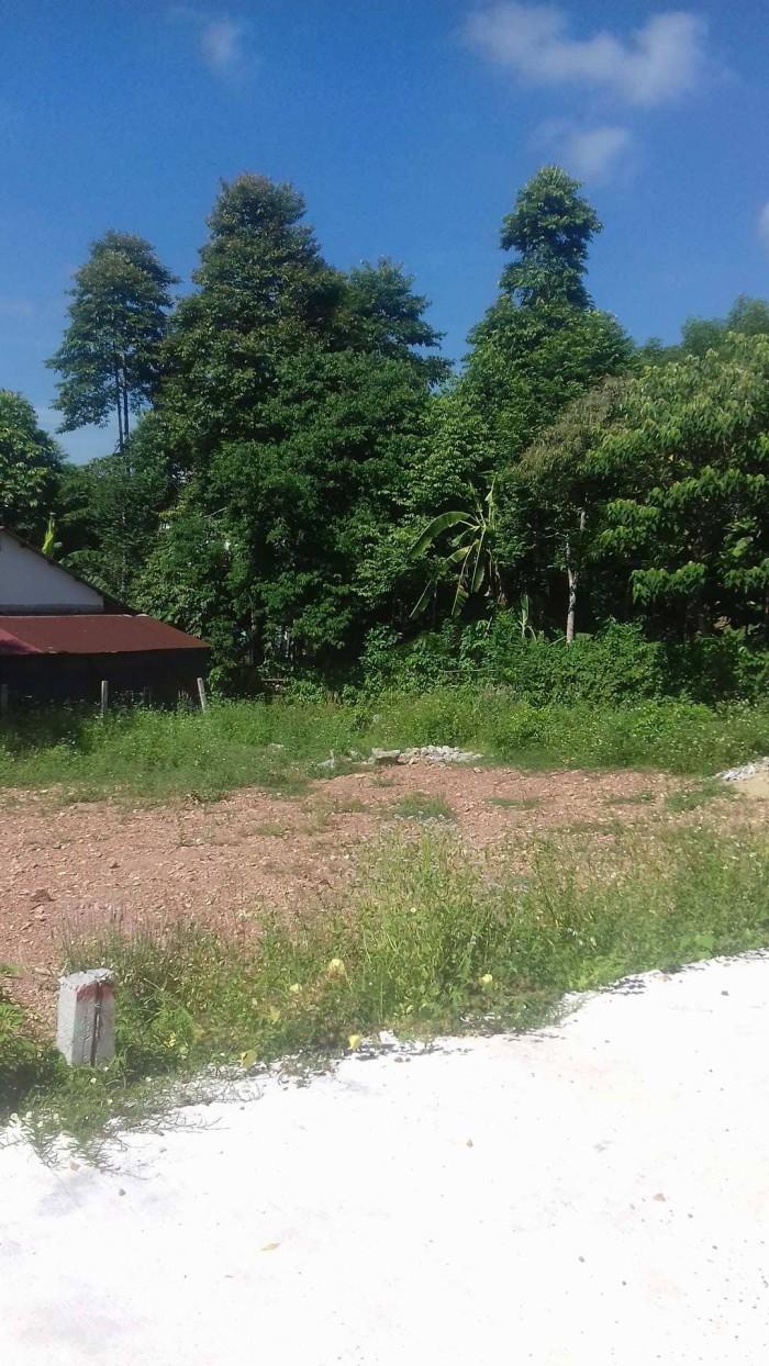Đất đẹp xây Biệt Thự Nhà vườn Phường Thủy Xuân thành phố Huế