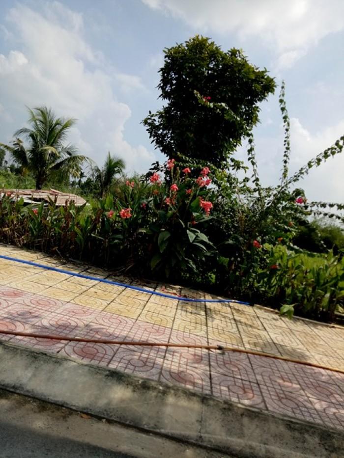 Cần sang nhượng lô đất phường An Phú Đông 13, quận 12 view sông thoáng mát.